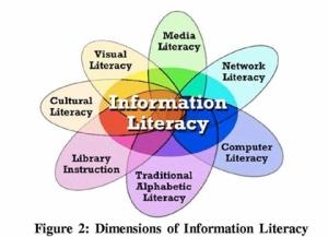 informationlit