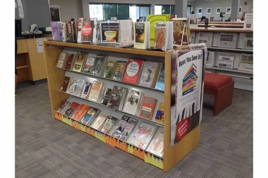 Kirkwood Banned Book Display