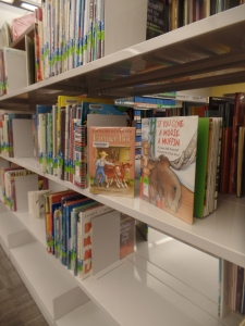 Chapter Book and Picture Book in Children's Section