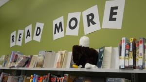 Baby Eagle on a book shelf