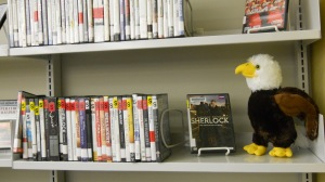 Baby Eagle on shelf with DVDS