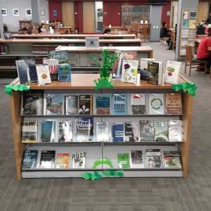 Display of new books decorated