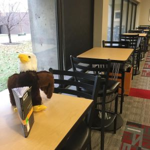 Stuffed Eggbert siting at new library tables